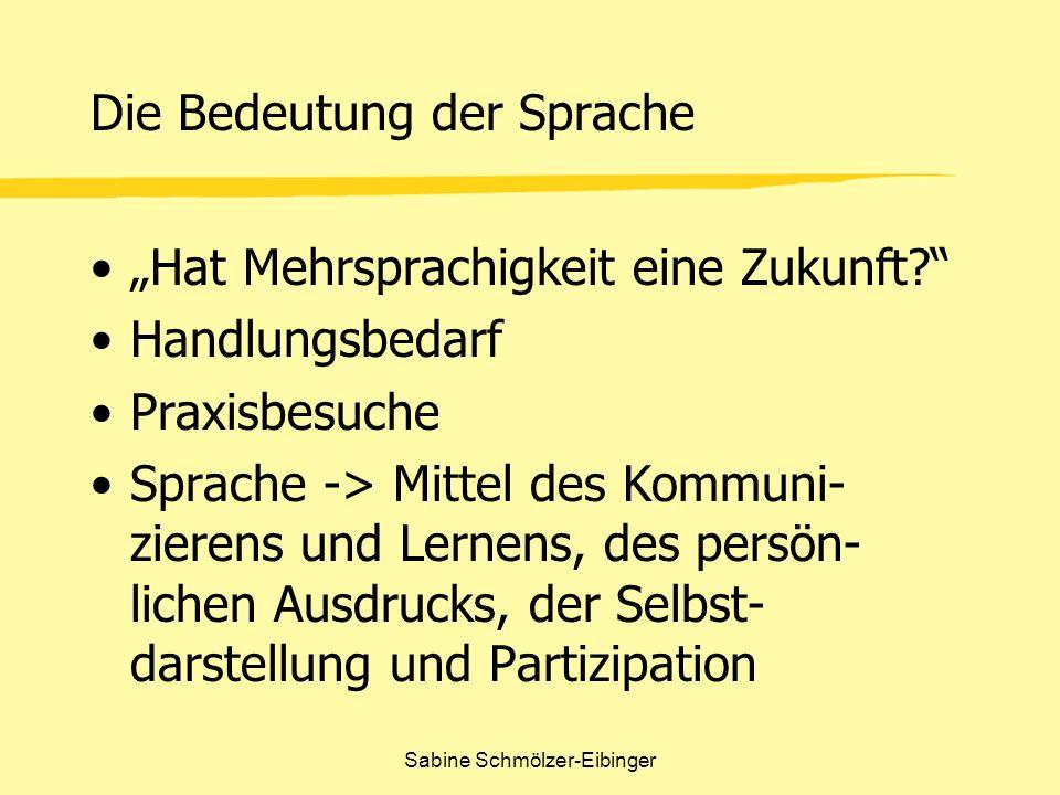 Sabine Schmölzer-Eibinger Die Bedeutung der Sprache Hat Mehrsprachigkeit eine Zukunft? Handlungsbedarf Praxisbesuche Sprache -> Mittel des Kommuni- zi