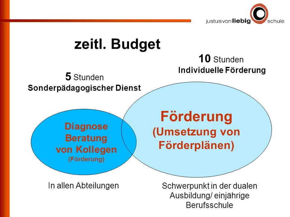 zeitl. Budget 5 Stunden Sonderpädagogischer Dienst Diagnose Beratung von Kollegen (Förderung) 10 Stunden Individuelle Förderung Förderung (Umsetzung v