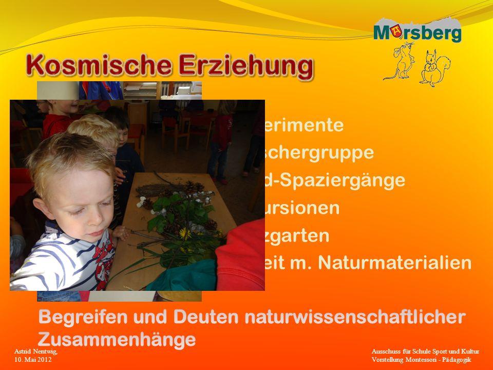 Experimente Forschergruppe Wald-Spaziergänge Exkursionen Nutzgarten Arbeit m. Naturmaterialien Astrid Nentwig, 10. Mai 2012 Ausschuss für Schule Sport