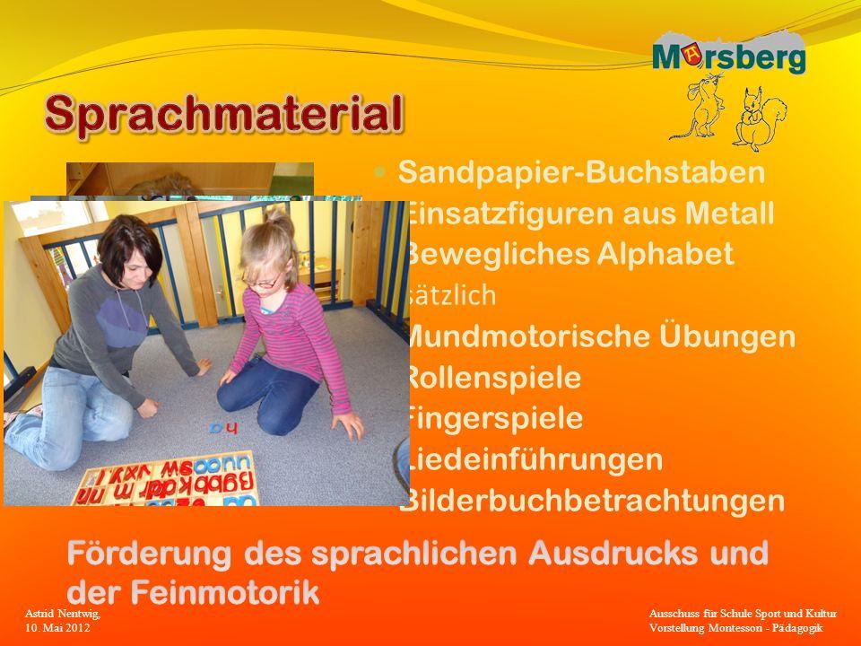 Sandpapier-Buchstaben Einsatzfiguren aus Metall Bewegliches Alphabet Zusätzlich Mundmotorische Übungen Rollenspiele Fingerspiele Liedeinführungen Bild