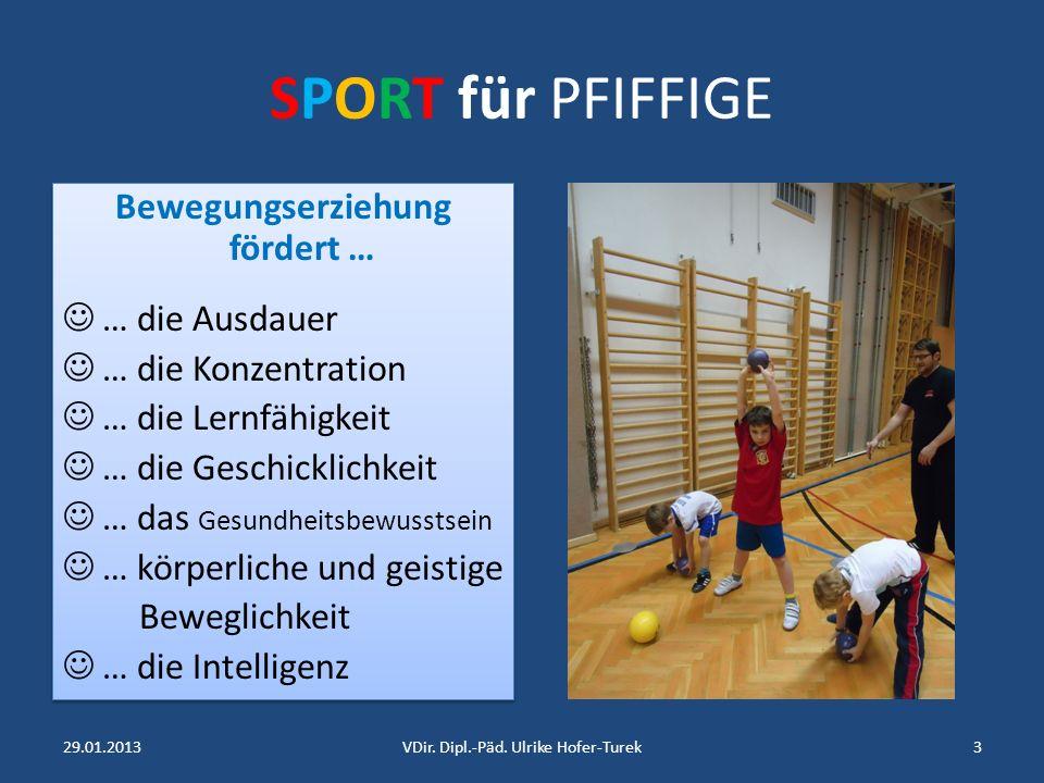 SPORT für PFIFFIGE Bewegungserziehung fördert … … die Ausdauer … die Konzentration … die Lernfähigkeit … die Geschicklichkeit … das Gesundheitsbewusstsein … körperliche und geistige Beweglichkeit … die Intelligenz Bewegungserziehung fördert … … die Ausdauer … die Konzentration … die Lernfähigkeit … die Geschicklichkeit … das Gesundheitsbewusstsein … körperliche und geistige Beweglichkeit … die Intelligenz 29.01.20133VDir.