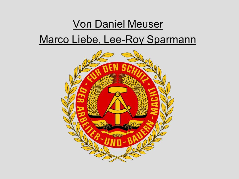 Von Daniel Meuser Marco Liebe, Lee-Roy Sparmann