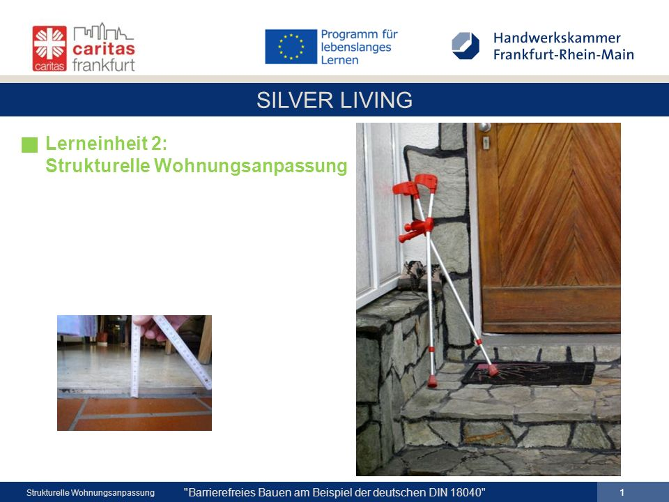 SILVER LIVING 1