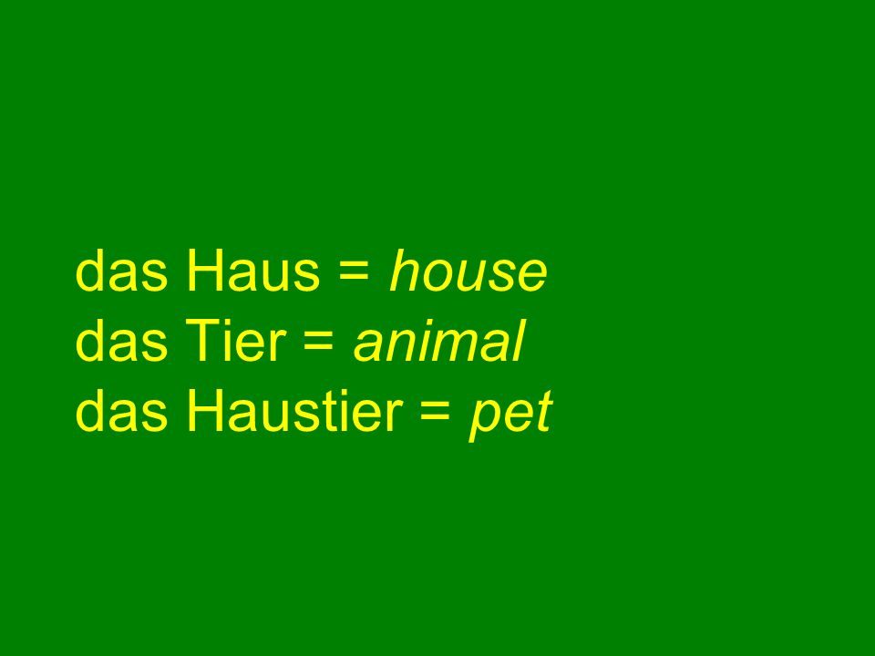 das Haus = house das Tier = animal das Haustier = pet