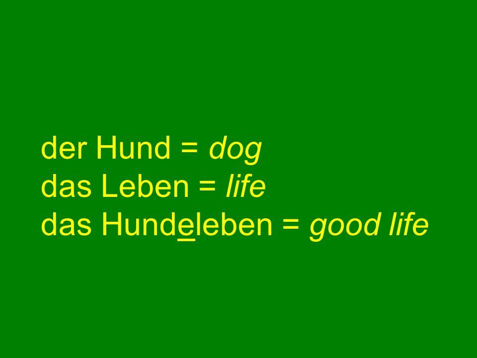 der Hund = dog das Leben = life das Hundeleben = good life
