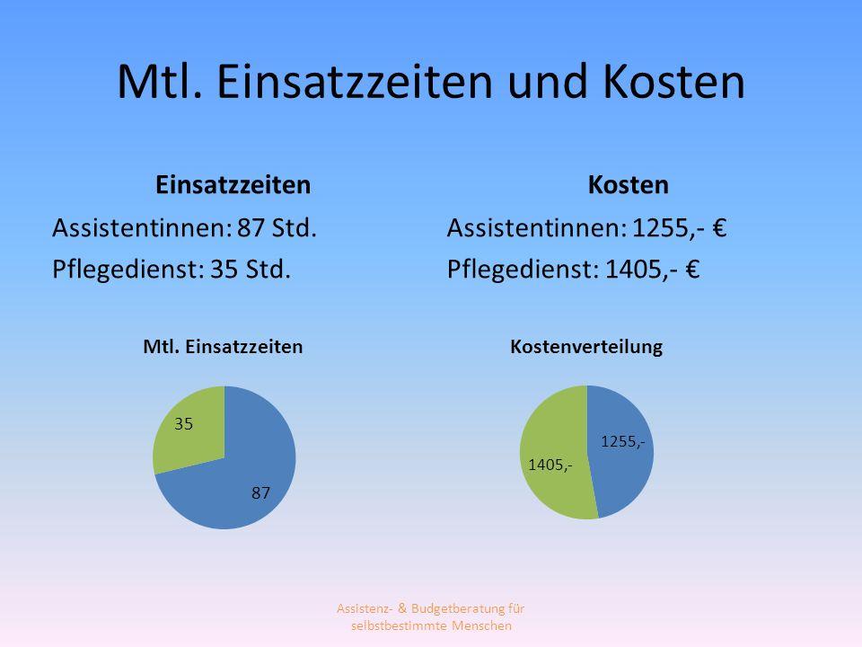 Mtl. Einsatzzeiten und Kosten Einsatzzeiten Assistentinnen: 87 Std. Pflegedienst: 35 Std. Kosten Assistentinnen: 1255,- Pflegedienst: 1405,- Assistenz