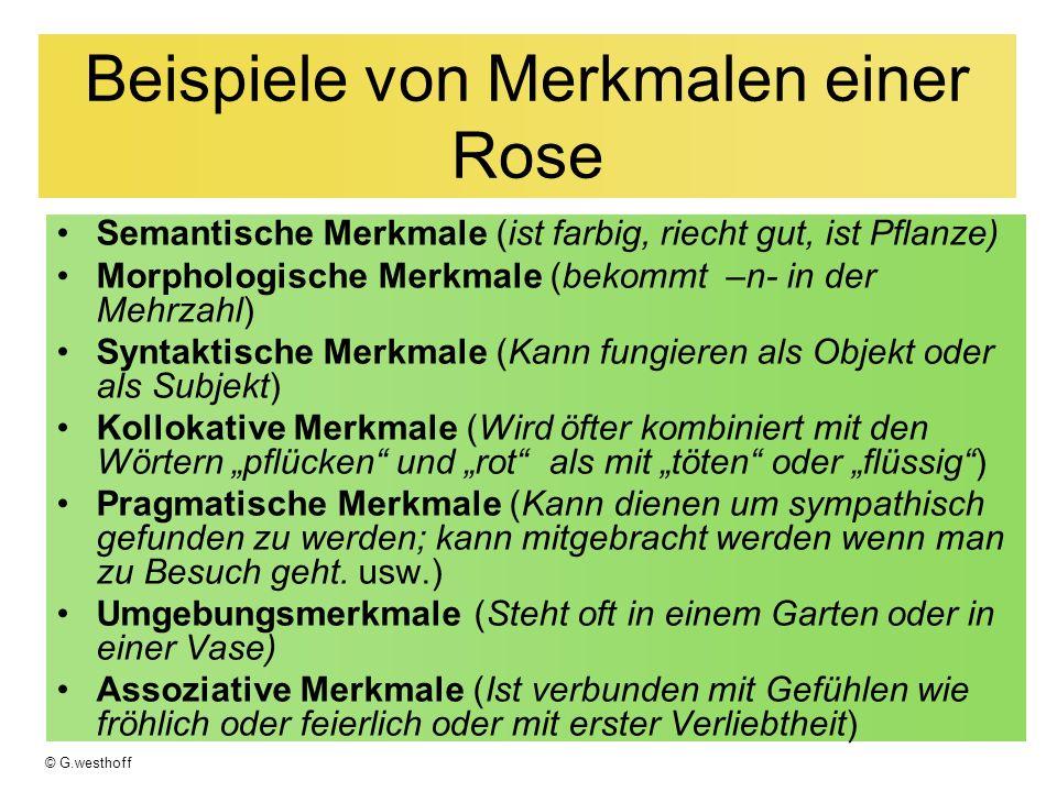 © G.westhoff Beispiele von Merkmalen einer Rose Semantische Merkmale (ist farbig, riecht gut, ist Pflanze) Morphologische Merkmale (bekommt –n- in der Mehrzahl) Syntaktische Merkmale (Kann fungieren als Objekt oder als Subjekt) Kollokative Merkmale (Wird öfter kombiniert mit den Wörtern pflücken und rot als mit töten oder flüssig) Pragmatische Merkmale (Kann dienen um sympathisch gefunden zu werden; kann mitgebracht werden wenn man zu Besuch geht.