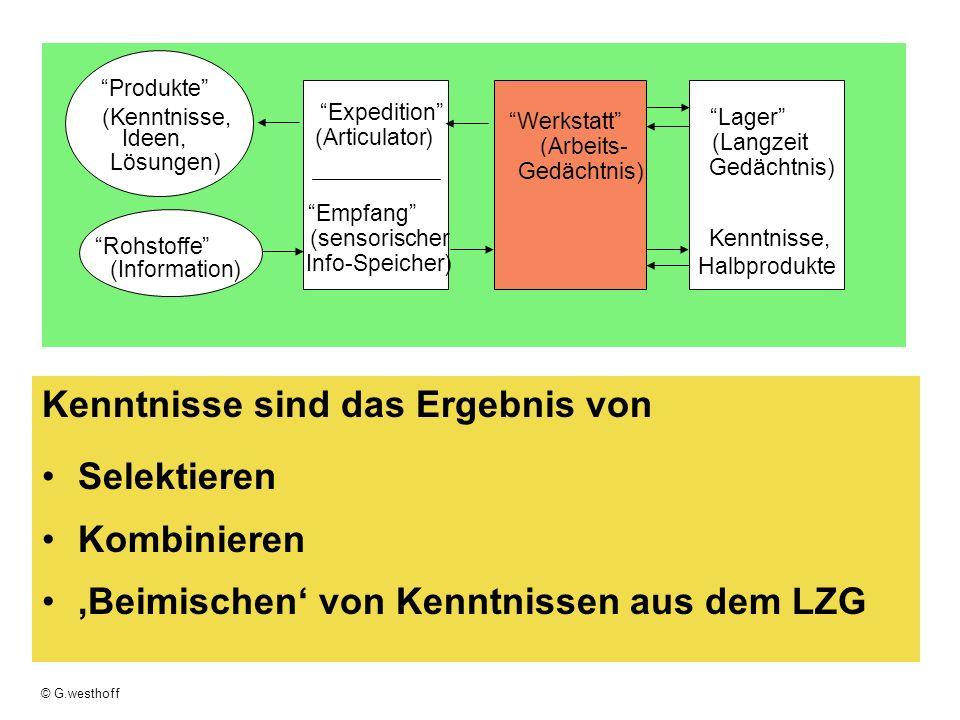© G.westhoff Kenntnisse sind das Ergebnis von Selektieren Kombinieren Beimischen von Kenntnissen aus dem LZG Empfang (sensorischer Info-Speicher) Rohs