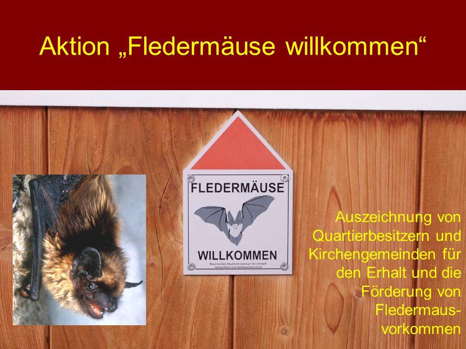 Aktion Fledermäuse willkommen Auszeichnung von Quartierbesitzern und Kirchengemeinden für den Erhalt und die Förderung von Fledermaus- vorkommen