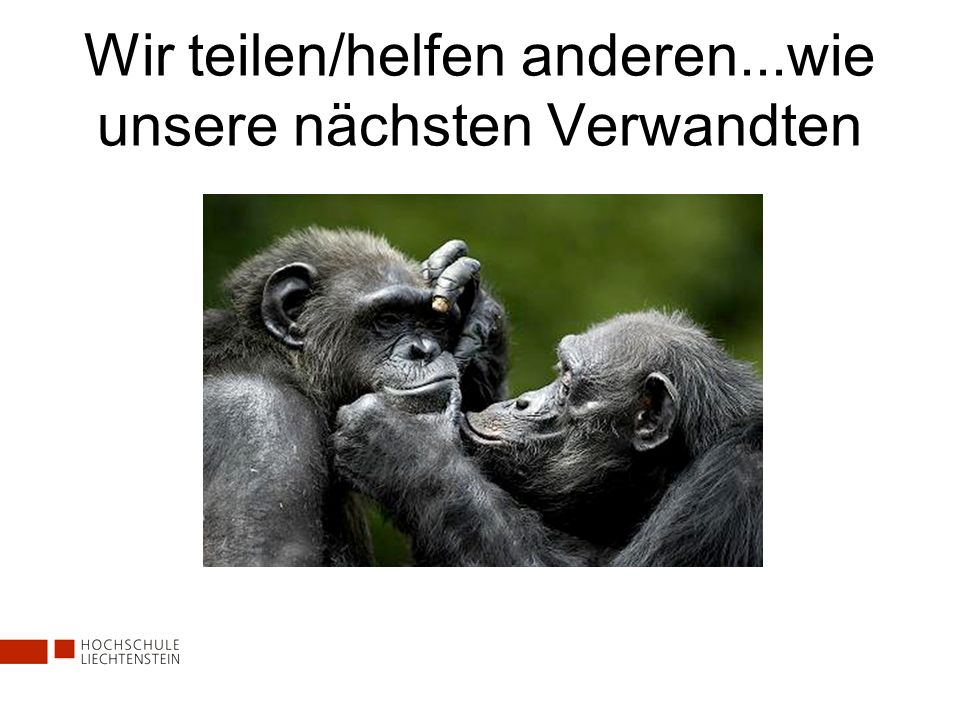 Affen, die helfen