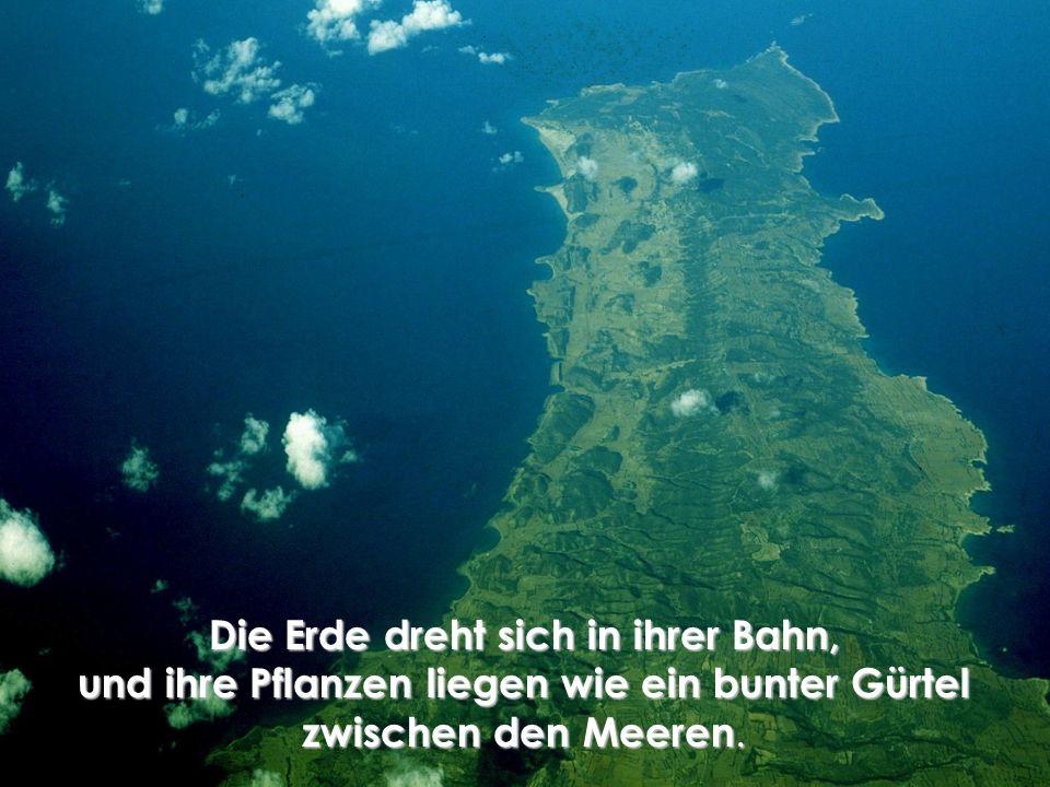 Die Erde dreht sich in ihrer Bahn, und ihre Pflanzen liegen wie ein bunter Gürtel zwischen den Meeren.