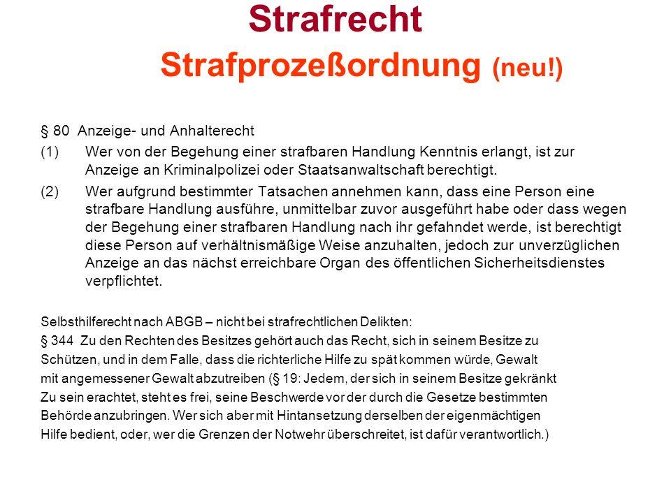 BG zum Schutz vor Gewalt in der Familie Exekutionsordnung § 382d.