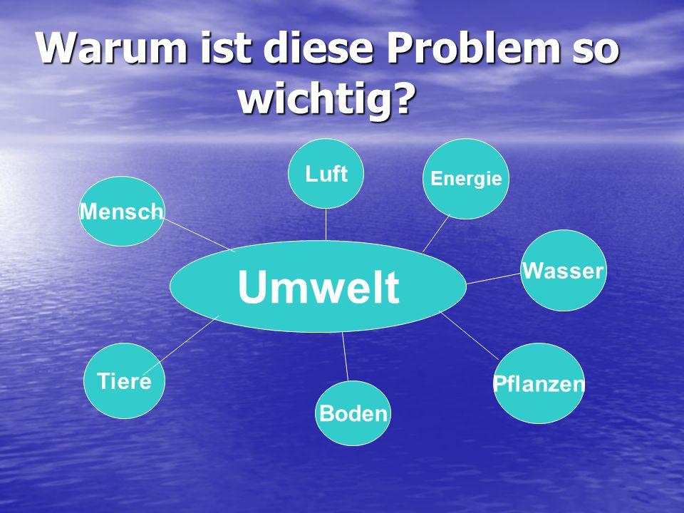 Warum ist diese Problem so wichtig? Umwelt Luft Wasser Boden Tiere Mensch Pflanzen Energie