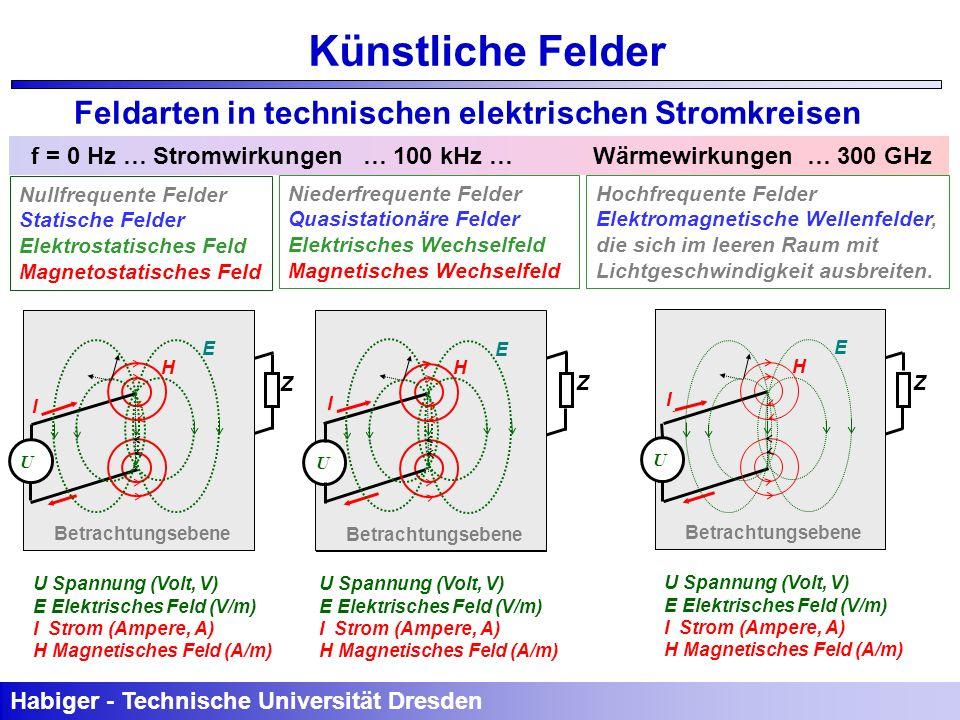 E H Betrachtungsebene U I E H U Spannung (Volt, V) E Elektrisches Feld (V/m) I Strom (Ampere, A) H Magnetisches Feld (A/m) Habiger - Technische Univer