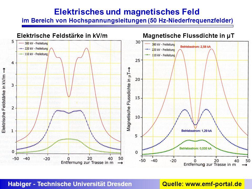 Habiger - Technische Universität Dresden Elektrisches und magnetisches Feld im Bereich von Hochspannungsleitungen (50 Hz-Niederfrequenzfelder) Quelle: