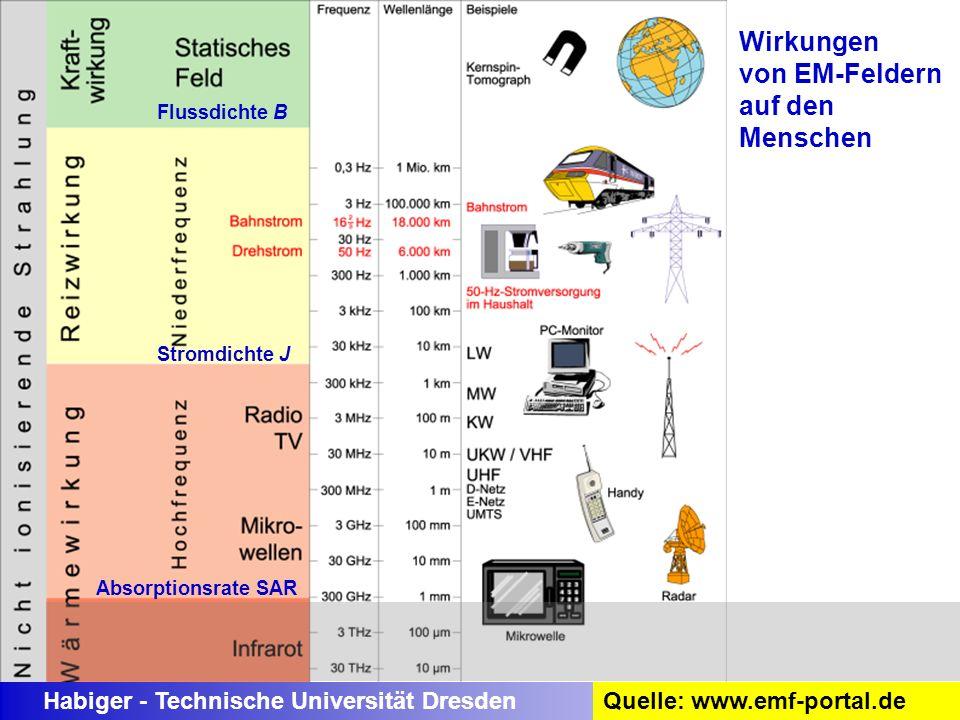 Habiger - Technische Universität Dresden Wirkungen von EM-Feldern auf den Menschen Flussdichte B Stromdichte J Absorptionsrate SAR Quelle: www.emf-por