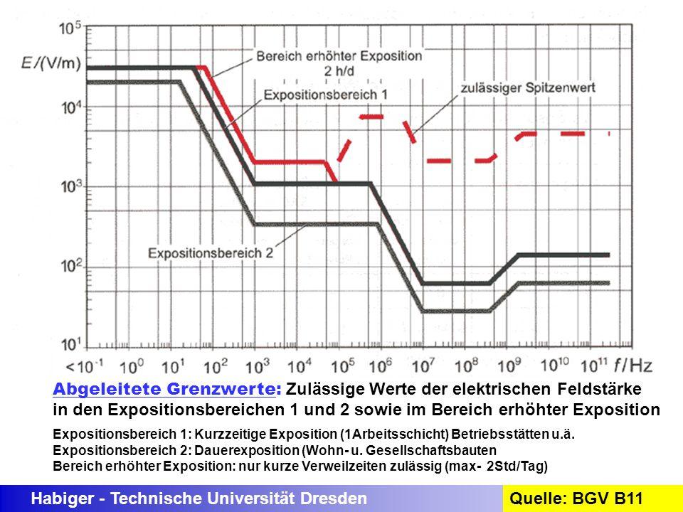 Habiger - Technische Universität DresdenQuelle: BGV B11 Abgeleitete Grenzwerte: Zulässige Werte der elektrischen Feldstärke in den Expositionsbereiche