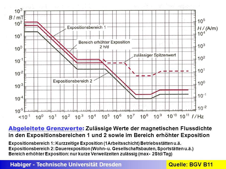 Habiger - Technische Universität DresdenQuelle: BGV B11 Abgeleitete Grenzwerte: Zulässige Werte der magnetischen Flussdichte in den Expositionsbereich