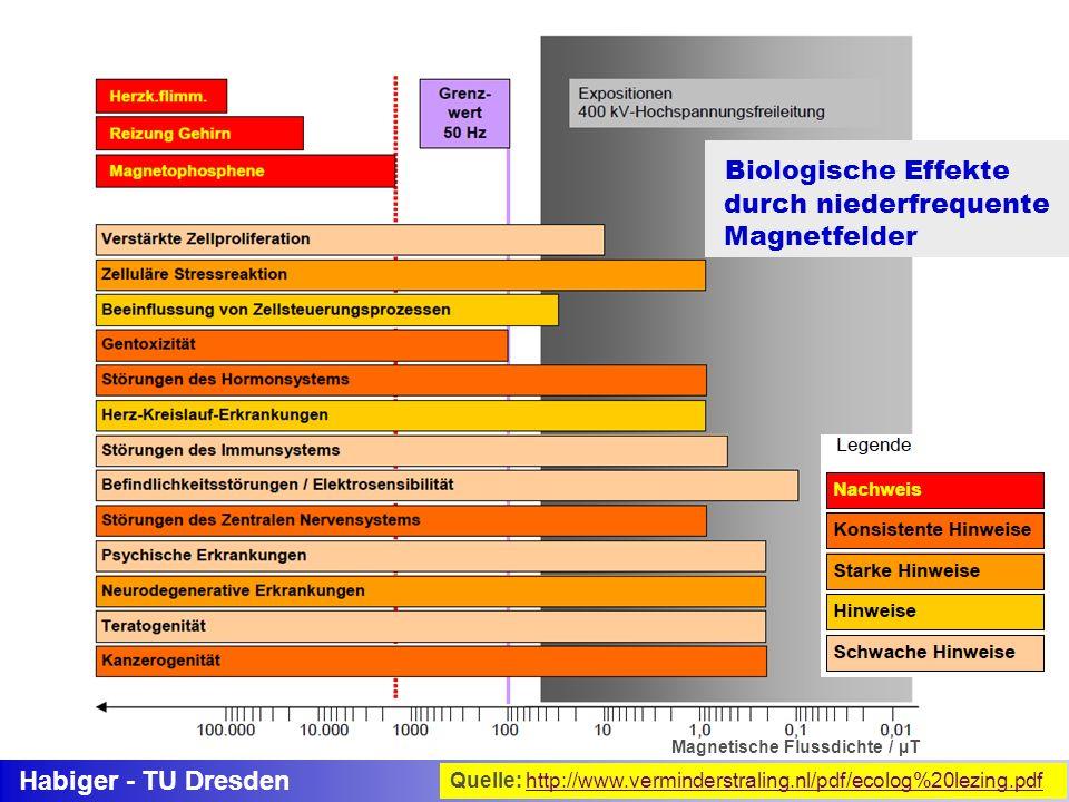 Habiger - TU Dresden Magnetische Flussdichte / µT Biologische Effekte durch niederfrequente Magnetfelder Quelle: http://www.verminderstraling.nl/pdf/e