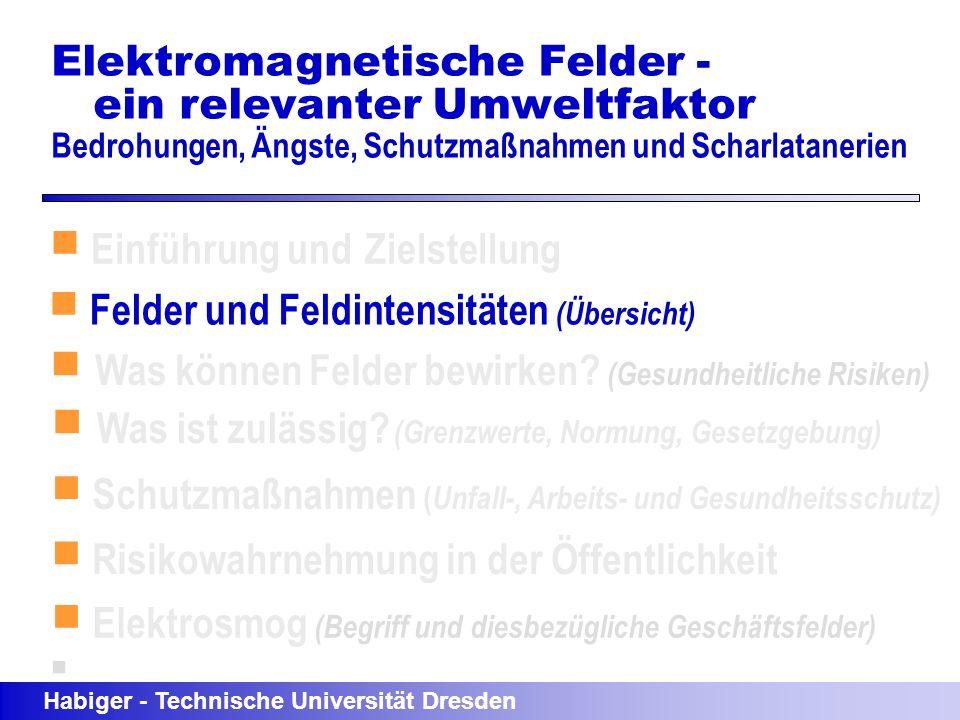 Einführung und Zielstellung Felder und Feldintensitäten (Übersicht) Was können Felder bewirken? (Gesundheitliche Risiken) Habiger - Technische Univers