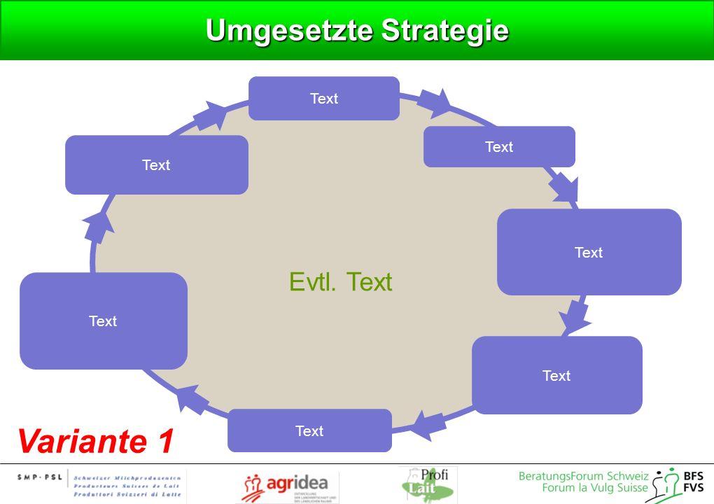 Umgesetzte Strategie Variante 1 Evtl. Text Text