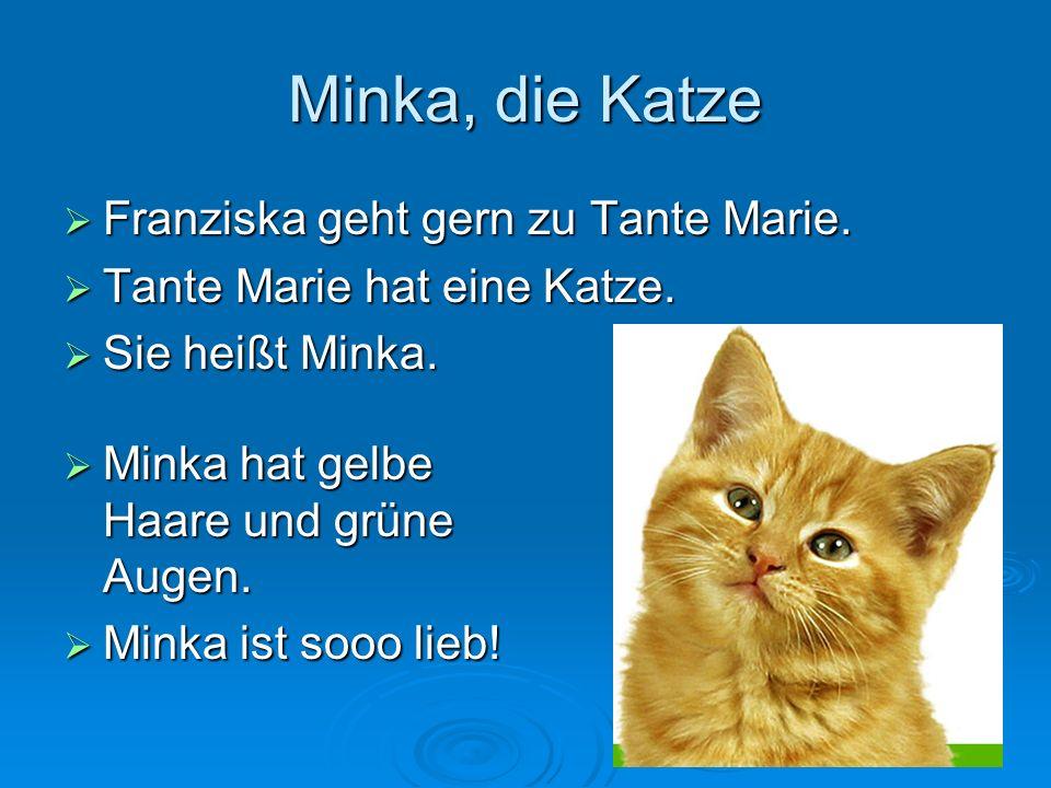 16 Minka, die Katze Franziska geht gern zu Tante Marie.