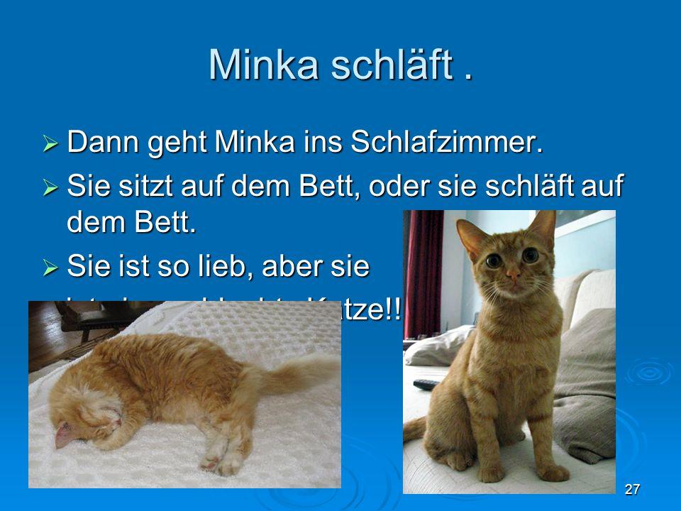 Minka schläft. Dann geht Minka ins Schlafzimmer. Dann geht Minka ins Schlafzimmer.