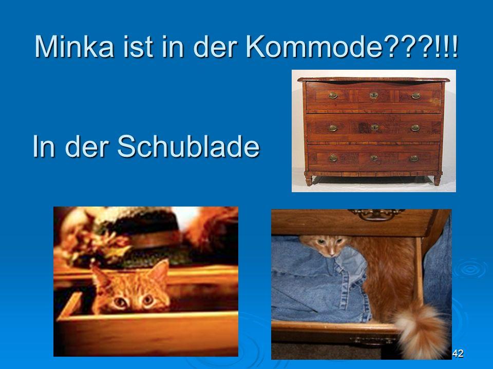 Minka ist in der Kommode???!!! 42 In der Schublade