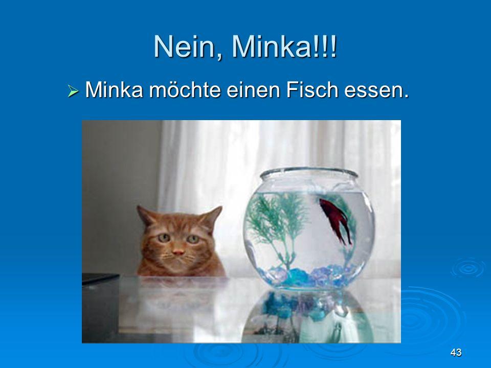 Nein, Minka!!! Minka möchte einen Fisch essen. Minka möchte einen Fisch essen. 43