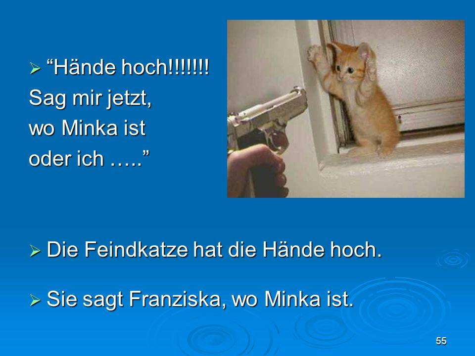 Hände hoch!!!!!!. Hände hoch!!!!!!. Sag mir jetzt, wo Minka ist oder ich …..