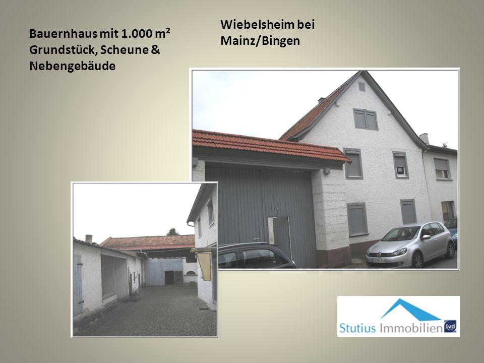 Wackernheim bei Mainz