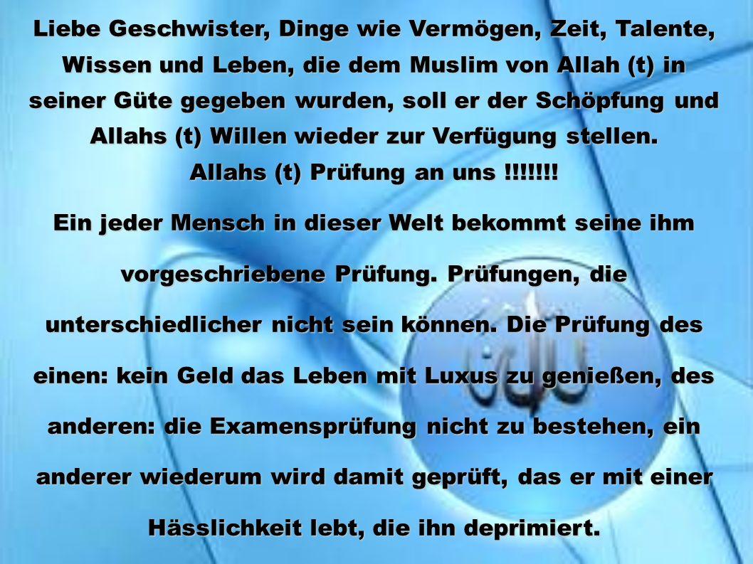 3.Denjenigen Diener (Allahs), dem Allah (t) Reichtum, aber kein Wissen geschenkt hat.