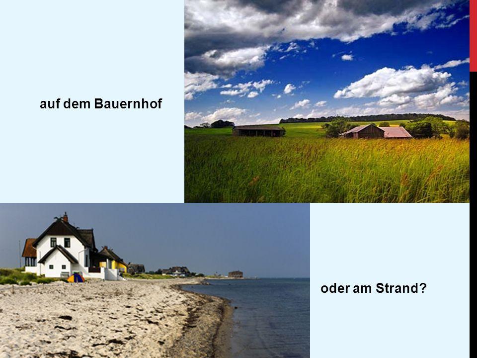 auf dem Bauernhof oder am Strand?