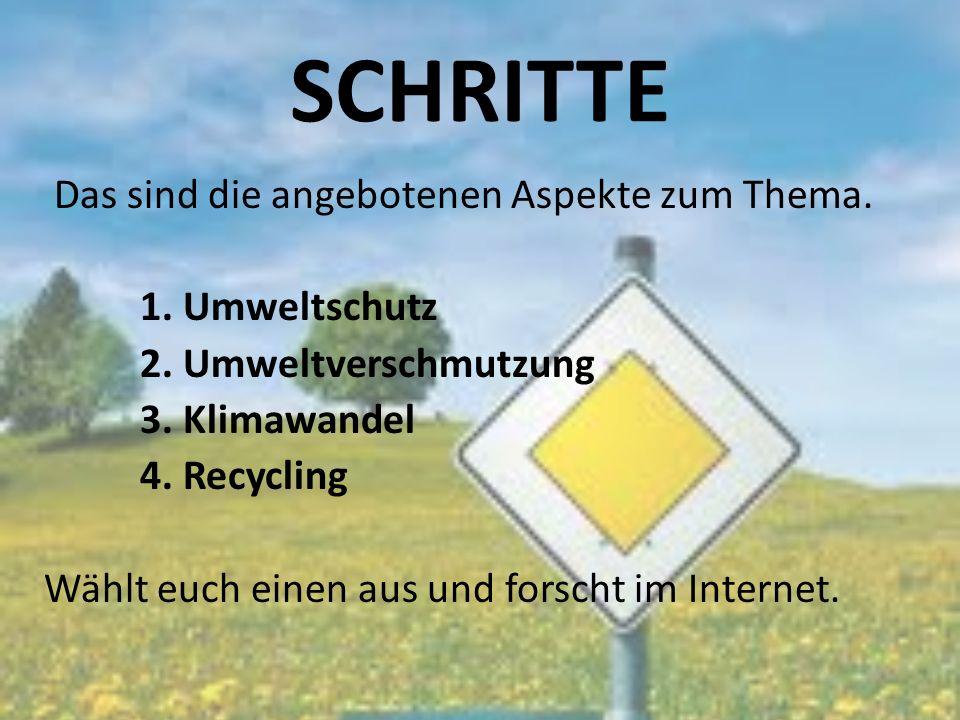 SCHRITTE Das sind die angebotenen Aspekte zum Thema. 1. Umweltschutz 2. Umweltverschmutzung 3. Klimawandel 4. Recycling Wählt euch einen aus und forsc