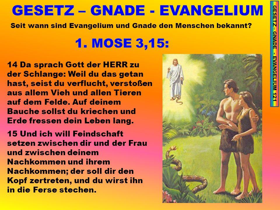 Seit wann sind Evangelium und Gnade den Menschen bekannt.