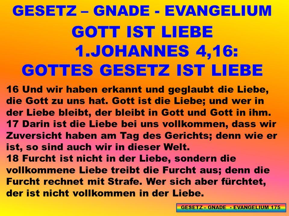16 Und wir haben erkannt und geglaubt die Liebe, die Gott zu uns hat.