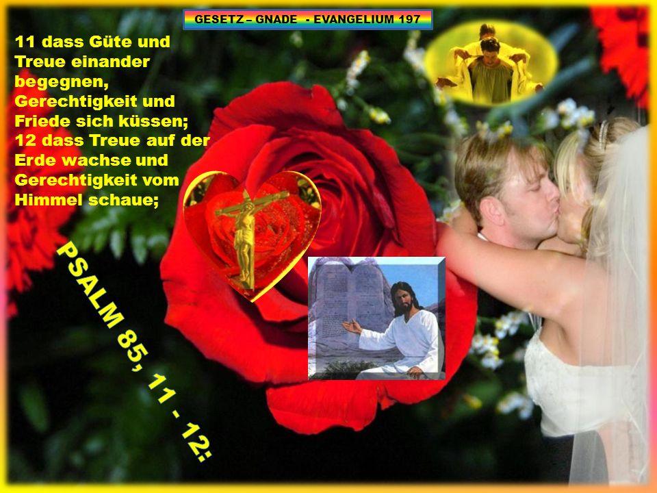 11 dass Güte und Treue einander begegnen, Gerechtigkeit und Friede sich küssen; 12 dass Treue auf der Erde wachse und Gerechtigkeit vom Himmel schaue; GESETZ – GNADE - EVANGELIUM 197