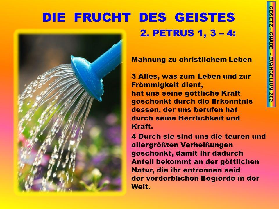 DIE FRUCHT DES GEISTES 2.