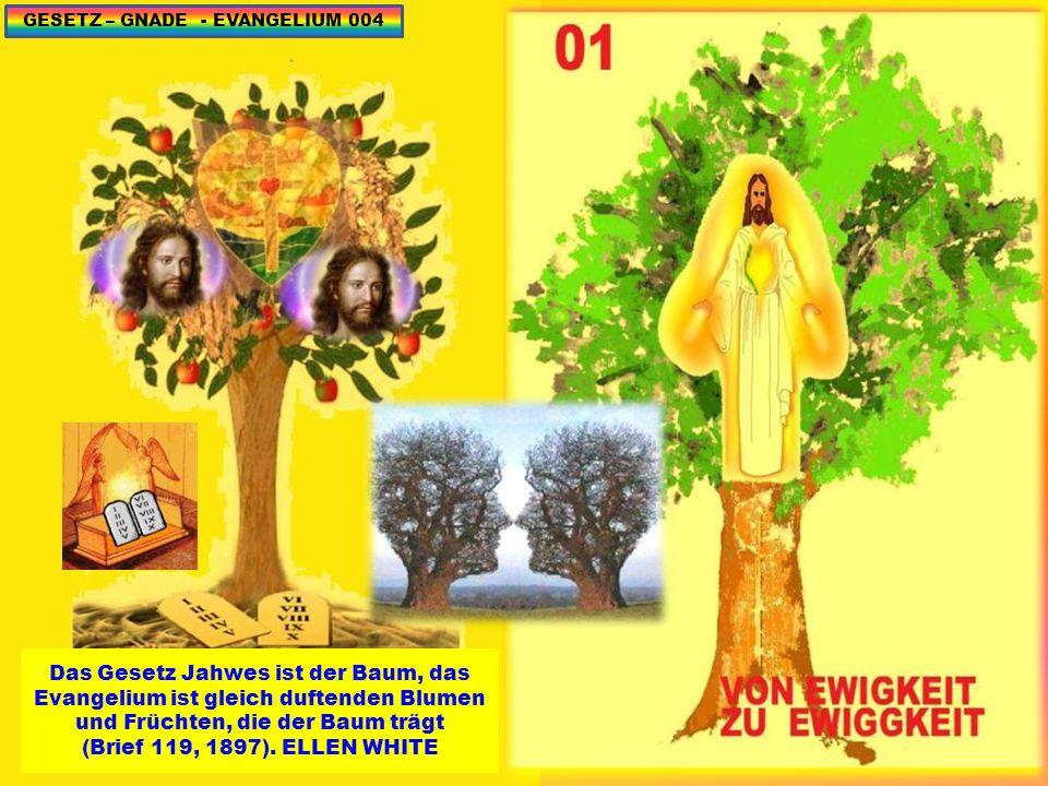 Das Gesetz Jahwes ist der Baum, das Evangelium ist gleich duftenden Blumen und Früchten, die der Baum trägt (Brief 119, 1897).