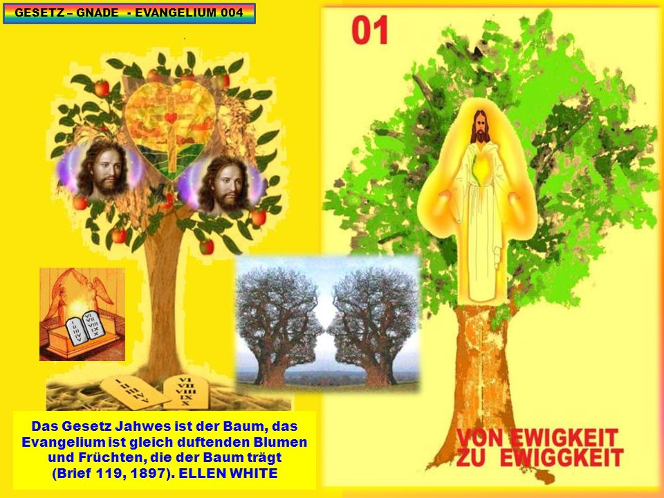 GESETZ – GNADE - EVANGELIUM 135