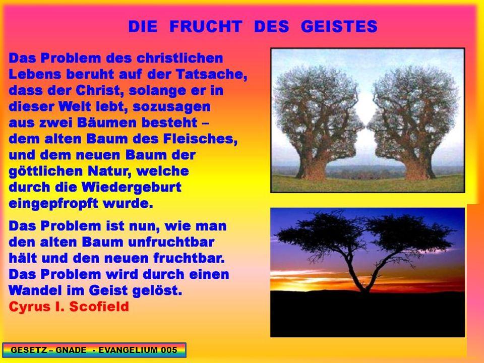 GESETZ – GNADE - EVANGELIUM 086