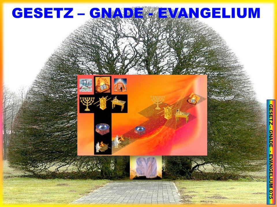 GESETZ – GNADE - EVANGELIUM 075
