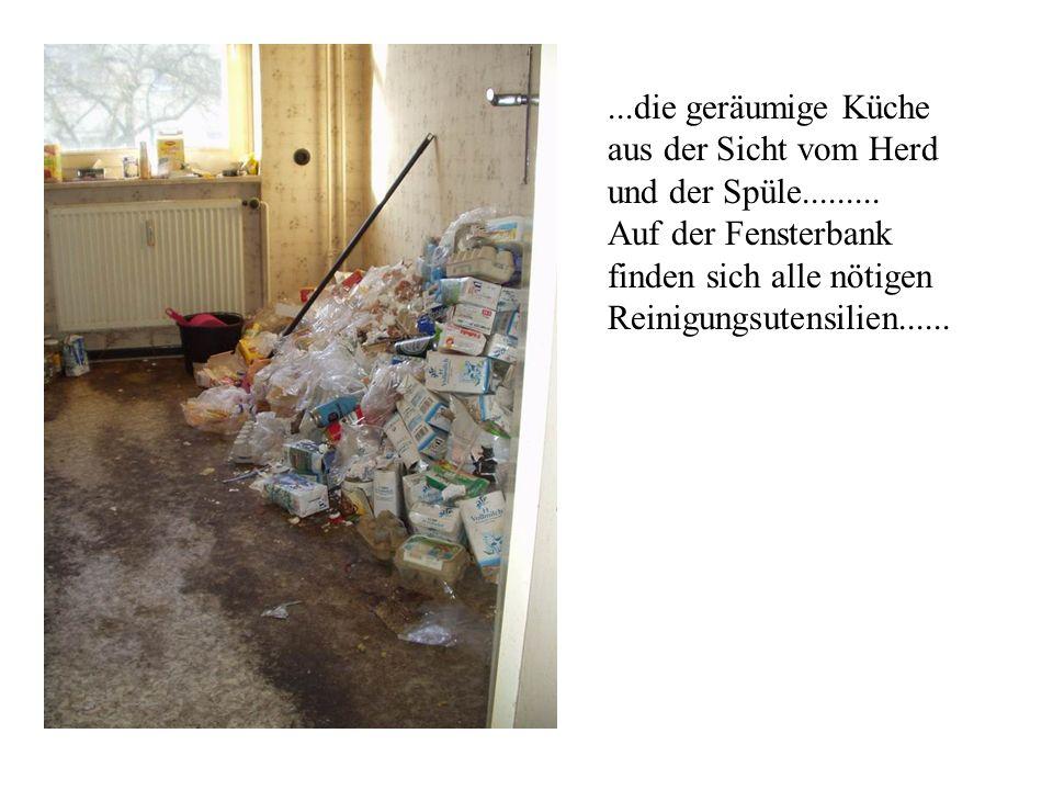 ...die geräumige Küche aus der Sicht vom Herd und der Spüle......... Auf der Fensterbank finden sich alle nötigen Reinigungsutensilien......