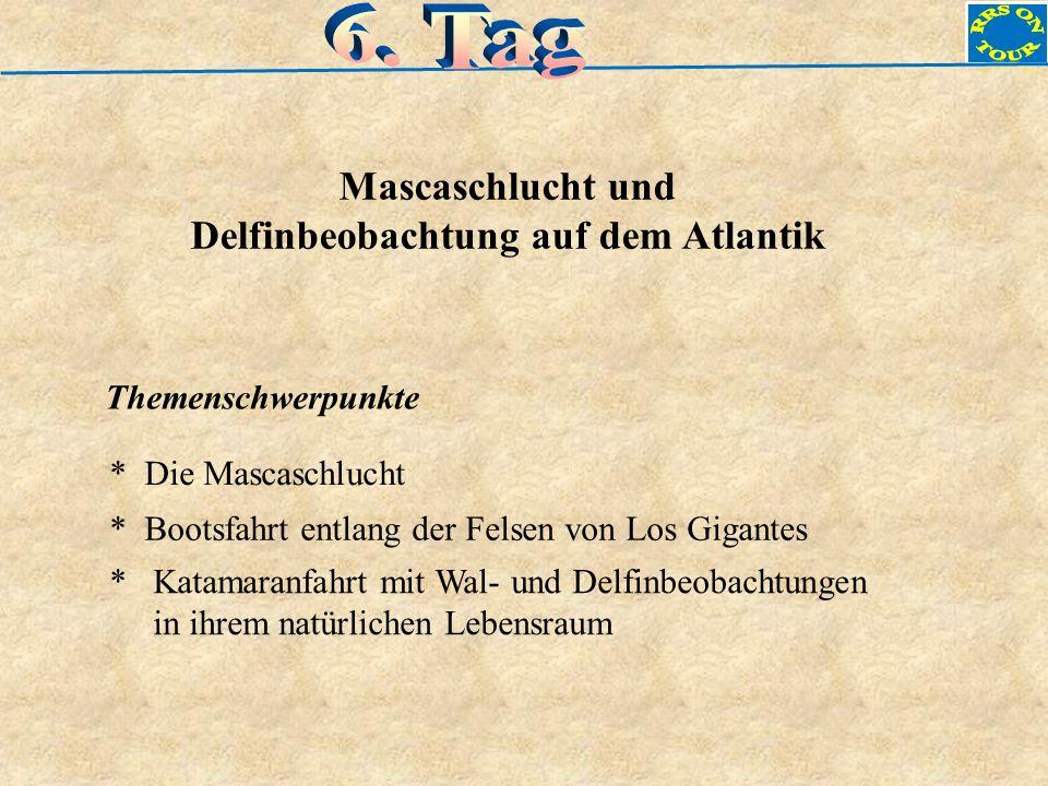 Mascaschlucht und Delfinbeobachtung auf dem Atlantik Themenschwerpunkte * Die Mascaschlucht * Katamaranfahrt mit Wal- und Delfinbeobachtungen in ihrem