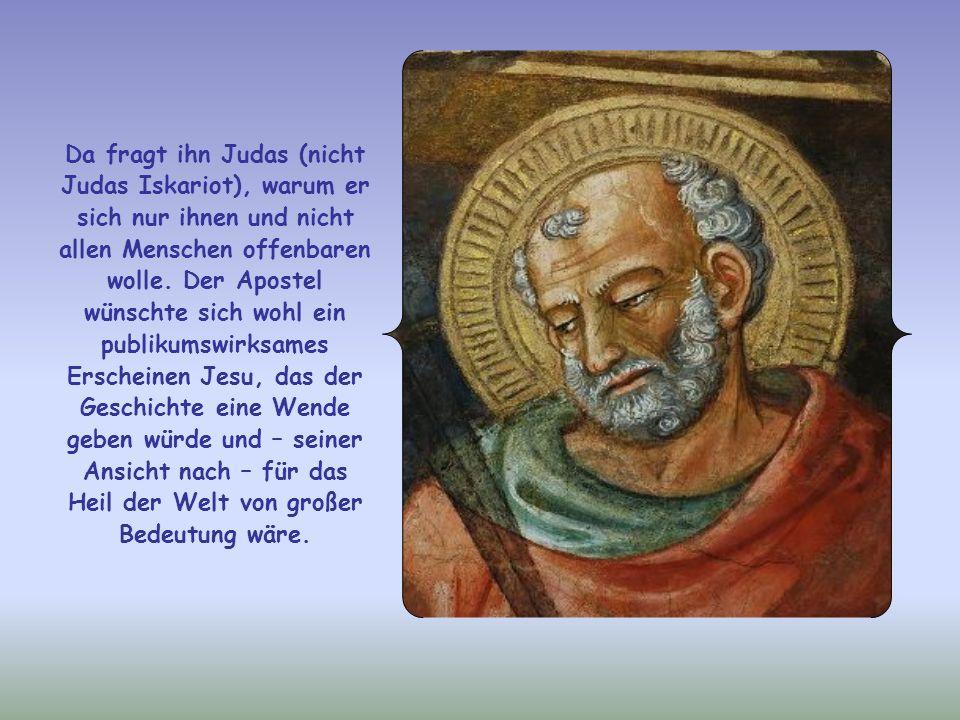 Da fragt ihn Judas (nicht Judas Iskariot), warum er sich nur ihnen und nicht allen Menschen offenbaren wolle.