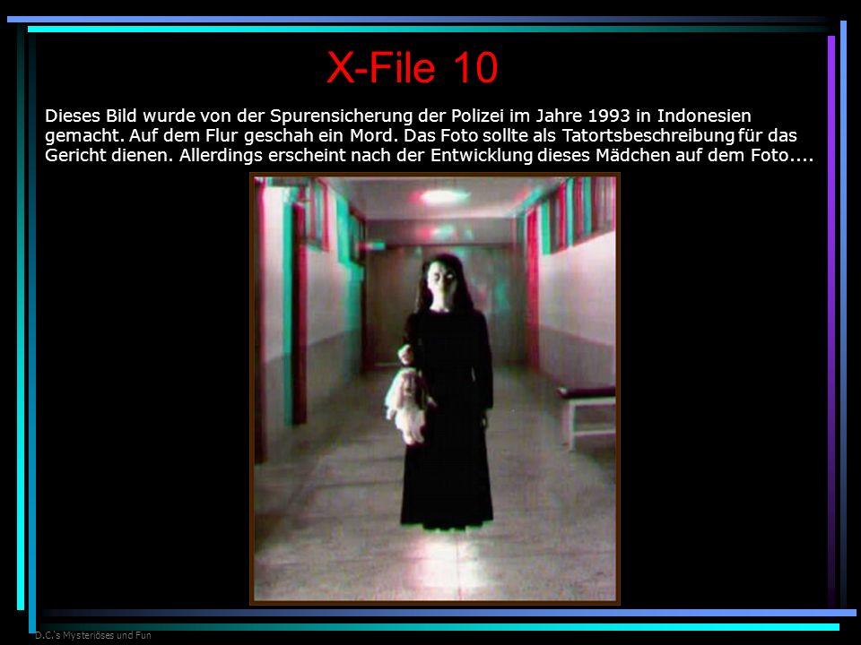 D.C.s Mysteriöses und Fun X-File 10 Dieses Bild wurde von der Spurensicherung der Polizei im Jahre 1993 in Indonesien gemacht. Auf dem Flur geschah ei
