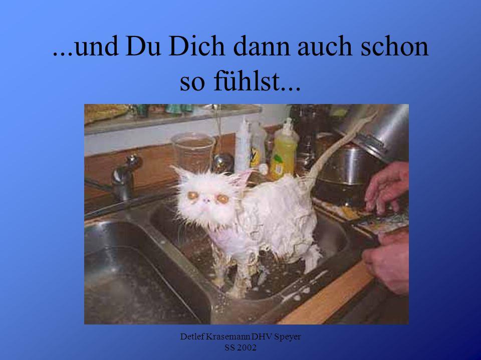 Detlef Krasemann DHV Speyer SS 2002...und Du Dich dann auch schon so fühlst...