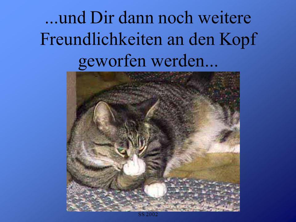 Detlef Krasemann DHV Speyer SS 2002...und Dir dann noch weitere Freundlichkeiten an den Kopf geworfen werden...
