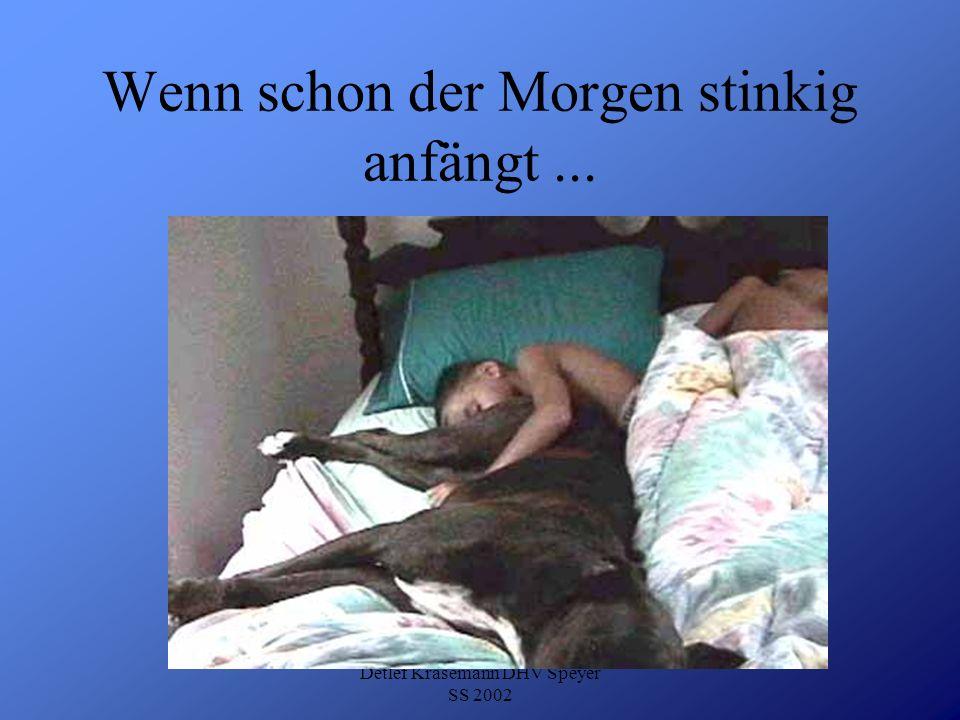 Detlef Krasemann DHV Speyer SS 2002 Wenn schon der Morgen stinkig anfängt...