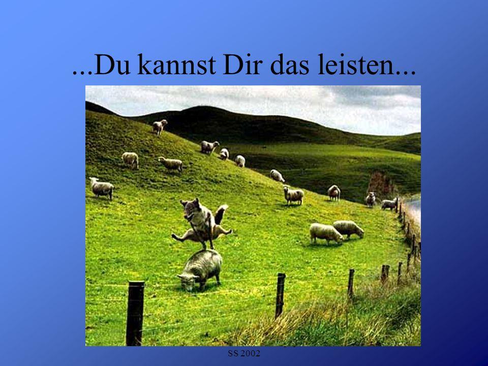 Detlef Krasemann DHV Speyer SS 2002...Du kannst Dir das leisten...